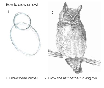 1. Draw some circles. 2. Draw the rest of the fucking owl